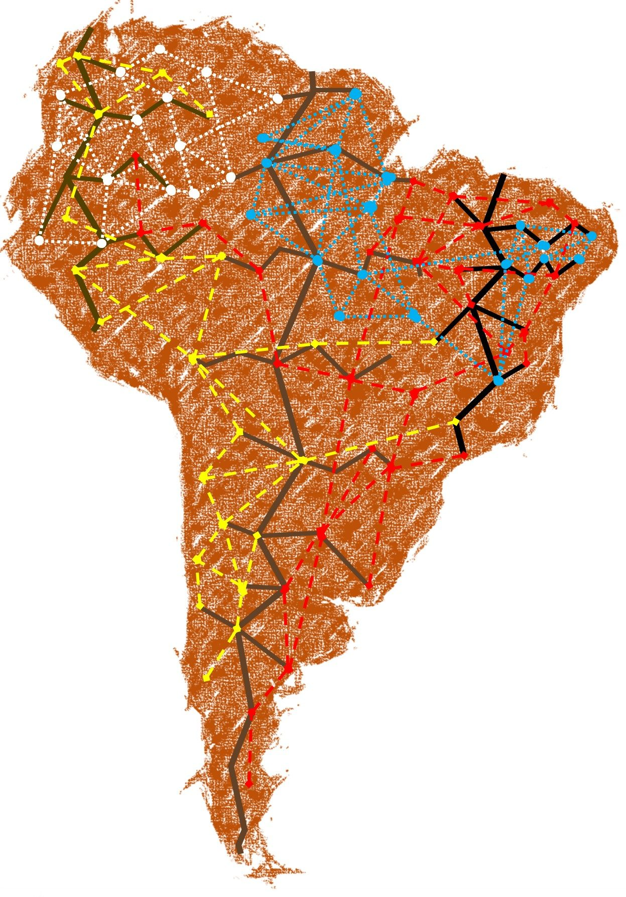 South American Mycorrhizal Research Network